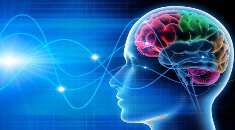 فعالیت مغز تا 10 دقیقه پس از مرگ ثبت شده است