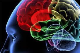دکتر طیبه عباسیون متخصص مغز و اعصاب و نوروالكترودياگنوستيك از انگلستان دوره تكميلي صرع از انگلستان عضو انجمن كلينيكال نوروفيزيولوژيستهاي انگلستان عضو انجمن متخصصين مغز و اعصاب اروپا