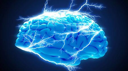 در کارکرد مغز انسان، نیمکره راست اندامهای طرف چپ را کنترل کرده، و در شناخت الگوها و فضای اطراف نقش دارد ، و نیمکره چپ، اندامهای طرف راست را کنترل کرده و نقش بیشتری را در زبان، و تجزیه و تحلیل دارا می باشد.